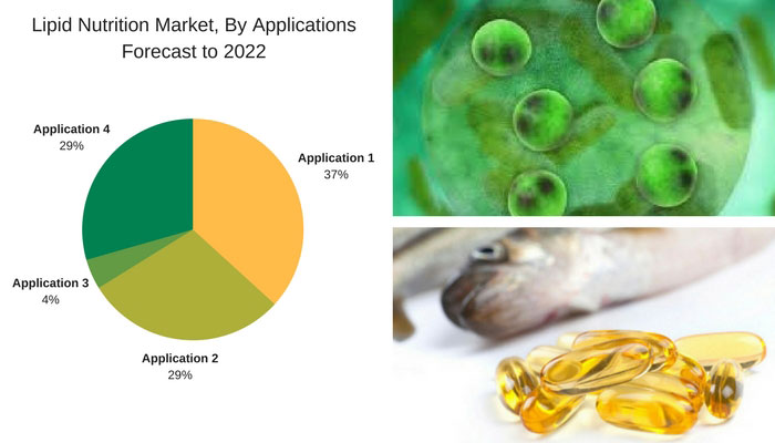 Lipid Nutrition Market