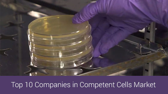 Competent cells market top companies